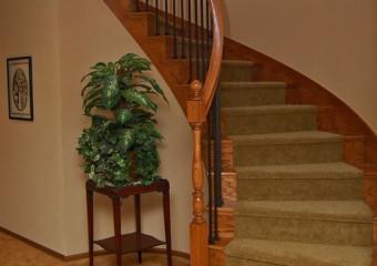 Bellevue Entry & Stair